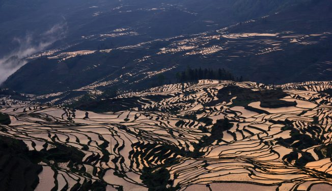 rice terraces in china yuanyang unesco